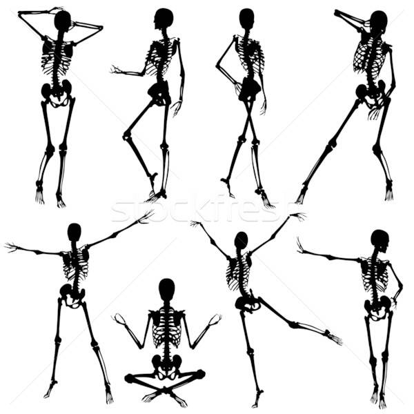 Esqueleto siluetas mujer diferente elemento diseno Foto stock © -TAlex-