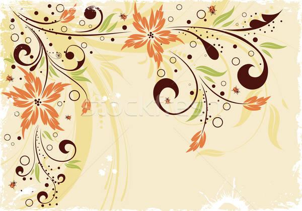 Stock fotó: Grunge · virágmintás · keret · katicabogár · alkotóelem · terv