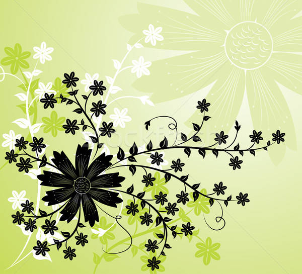 Stock photo: Grunge background flower, elements for design, vector