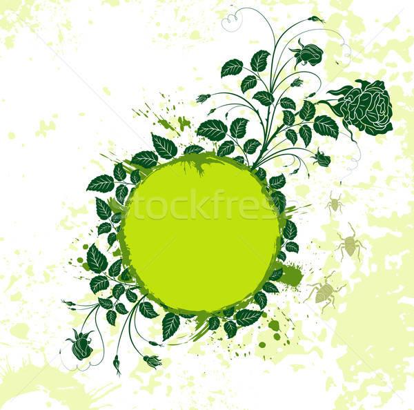 Absztrakt virágmintás keret grunge rovar alkotóelem Stock fotó © -TAlex-