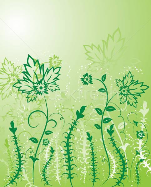 Flor elementos projeto ilustração arte verão Foto stock © -TAlex-