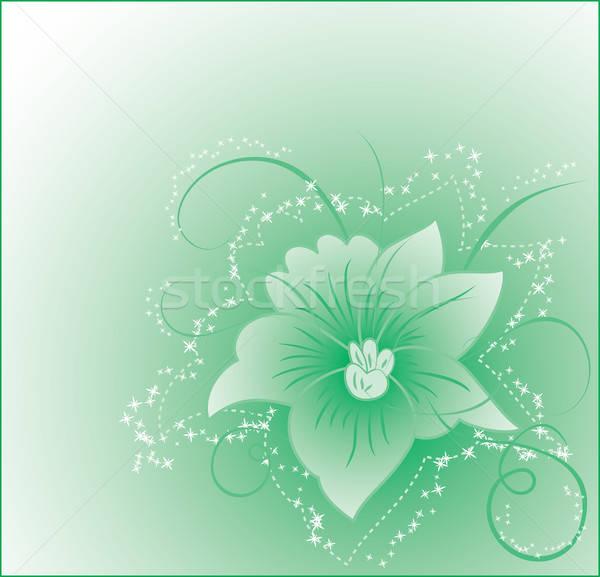 Background flower, elements for design Stock photo © -TAlex-