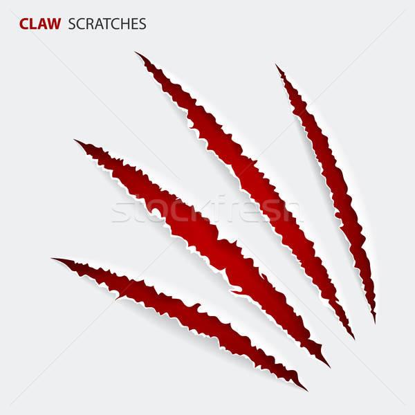 Scratch Claws of Animal Stock photo © -TAlex-