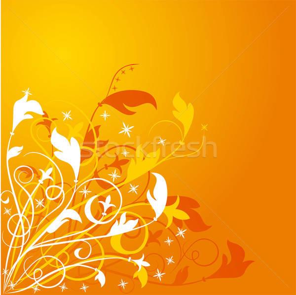 Background flower Stock photo © -TAlex-