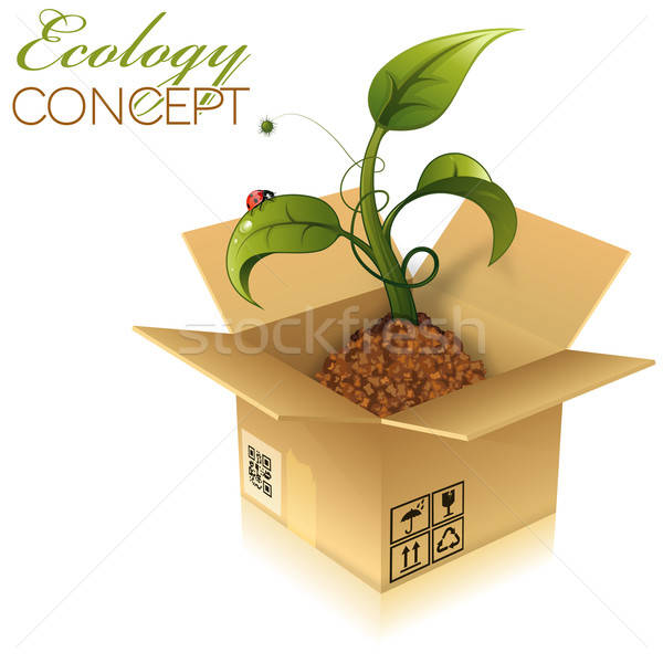 Stock photo: Cardboard Box with Sprout