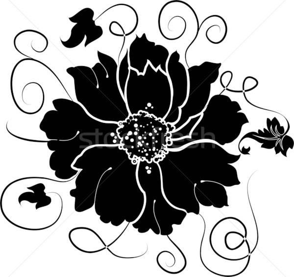 Element for design, flower, illustration Stock photo © -TAlex-