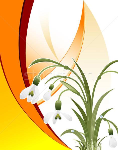 Modello onda elemento design fiore natura sfondo Foto d'archivio © -TAlex-