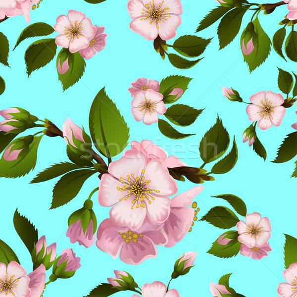 çiçekler bahar doğa elma Stok fotoğraf © 0mela
