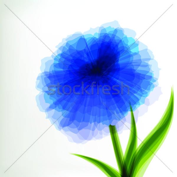 Blu trasparente fiore primavera abstract sfondo Foto d'archivio © 0mela