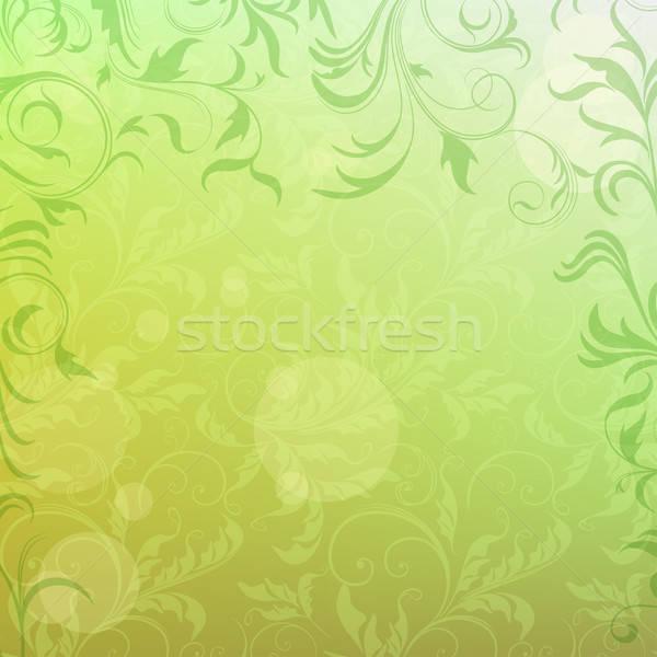 Vecteur floral mode nature lumière Photo stock © 0mela
