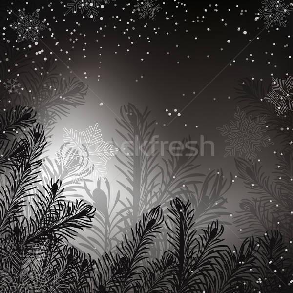 Feketefehér karácsony hó természet fény terv Stock fotó © 0mela