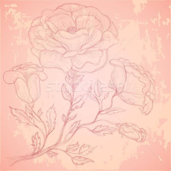Rajz rózsa ág koszos textúra virág Stock fotó © 0mela