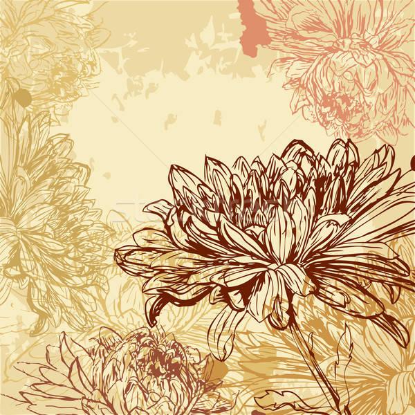 Krizantem doku soyut dizayn yaprak bahçe Stok fotoğraf © 0mela