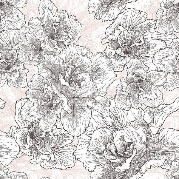 Model ebegümeci çiçekler çiçek Stok fotoğraf © 0mela