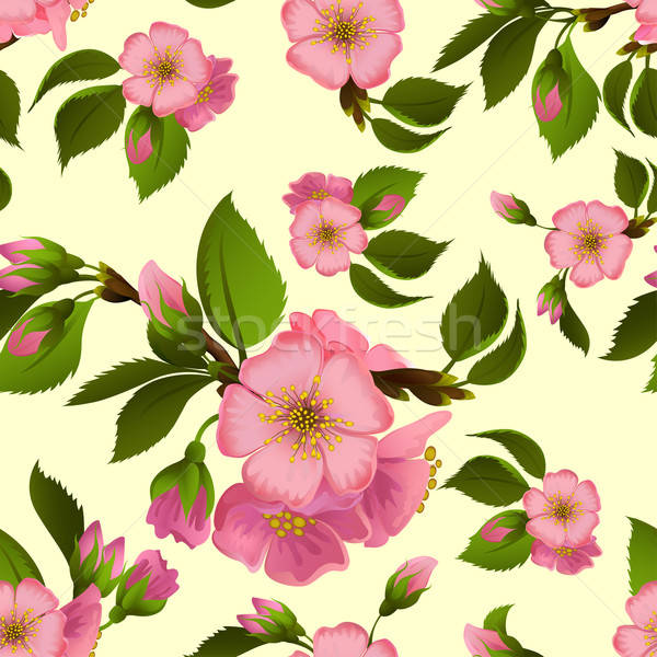 Seamless pattern with spring apple blossom Stock photo © 0mela