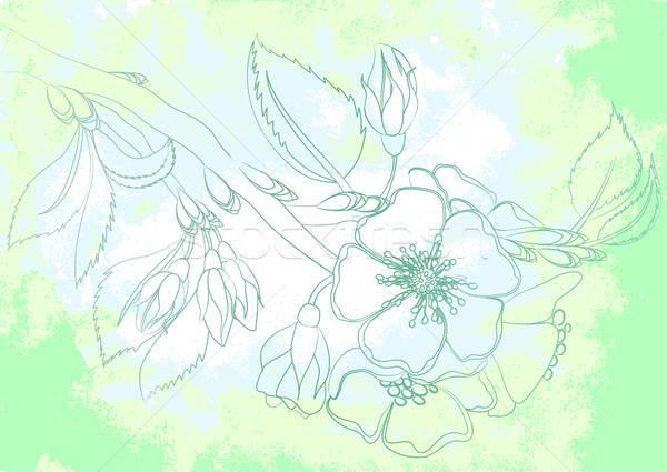 Acquerello disegnare mela fiore albero primavera Foto d'archivio © 0mela