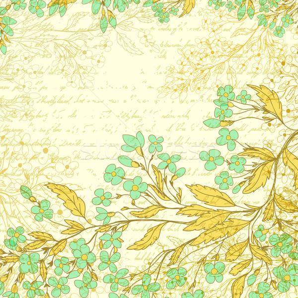 Dessinés à la main fleurs jardin fond art automne Photo stock © 0mela