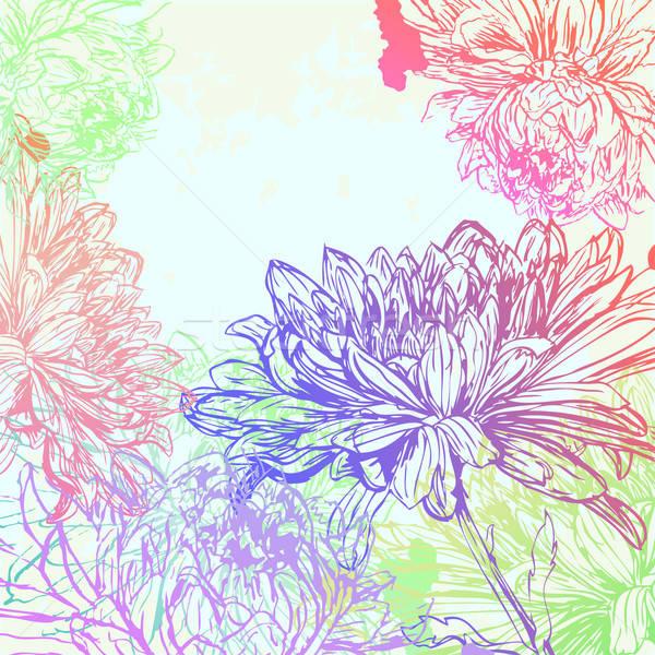 Krizantem çiçek doku soyut dizayn arka plan Stok fotoğraf © 0mela