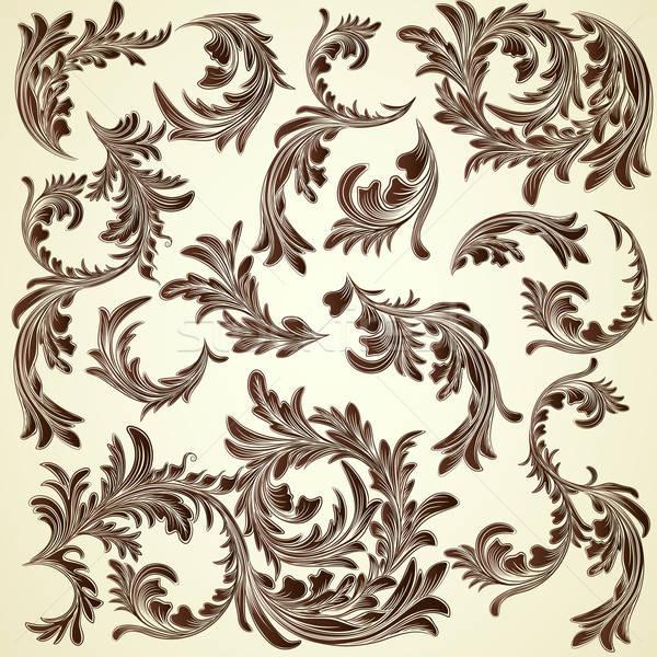 Szett klasszikus kalligrafikus virágmintás ágak textúra Stock fotó © 0mela