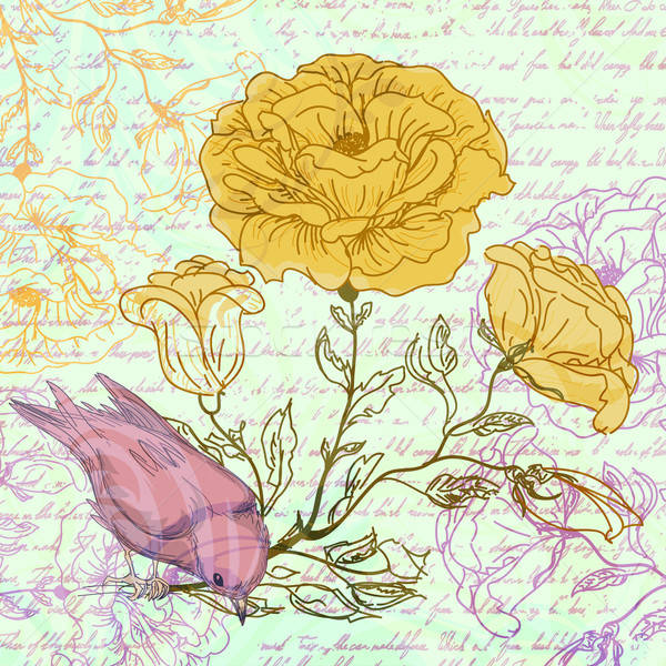 Koszos retro rózsák madár tavasz terv Stock fotó © 0mela