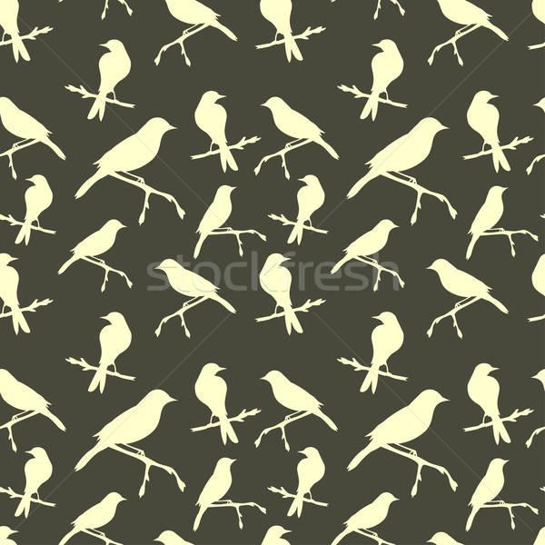 Kuşlar doku bahar orman doğa Stok fotoğraf © 0mela