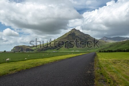 IJsland weg landschap hemel wolken gras Stockfoto © 1Tomm