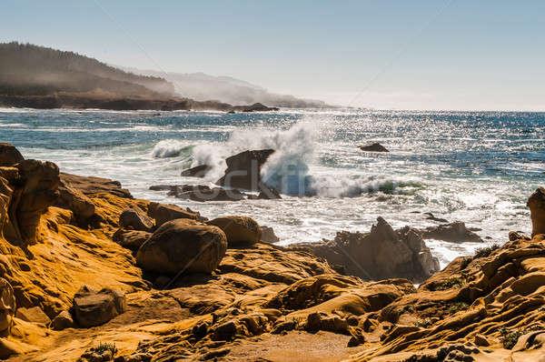 Nord Californie rive photos vagues nature Photo stock © 1Tomm