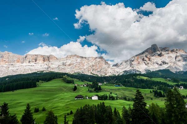 Photo stock: Typique · vue · alpine · baisser · vert · ceinture
