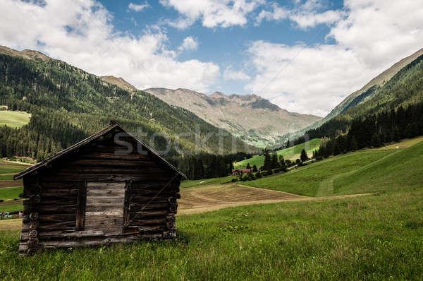 Alpine vallei houten hut typisch Stockfoto © 1Tomm