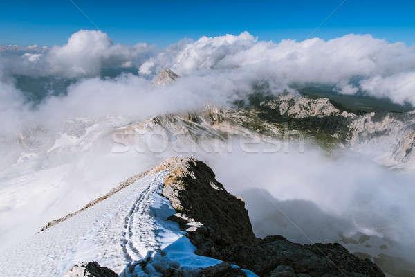 Alpen boven wolken mooie boom Stockfoto © 1Tomm