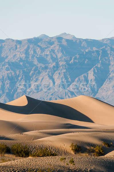 Dood vallei verticaal woestijn landschap Stockfoto © 1Tomm