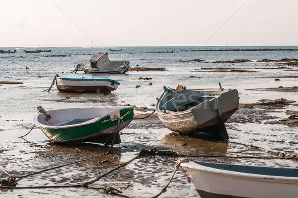 заброшенный лодках фотография древесины морем лодка Сток-фото © 1Tomm