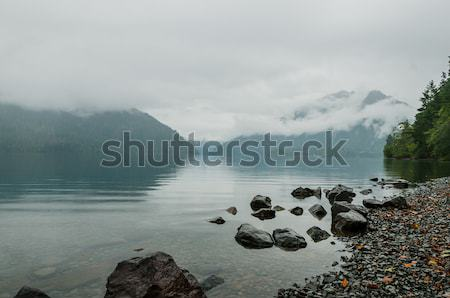 Misty lake Stock photo © 1Tomm