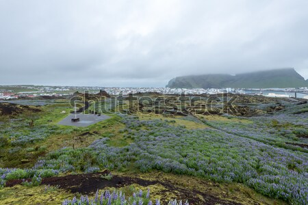 Stad eilanden IJsland weg gebouw stad Stockfoto © 1Tomm