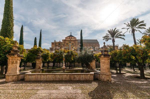 Photo stock: Magnifique · mosquée · photos · célèbre · piscine · Voyage