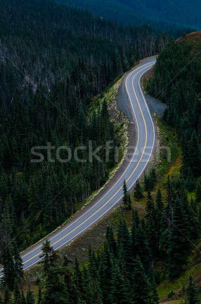 пусто горные дороги вертикальный мнение только Сток-фото © 1Tomm