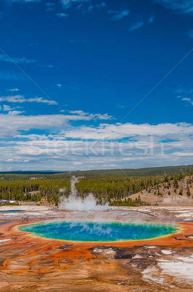 Printemps vertical vue parc source chaude Photo stock © 1Tomm