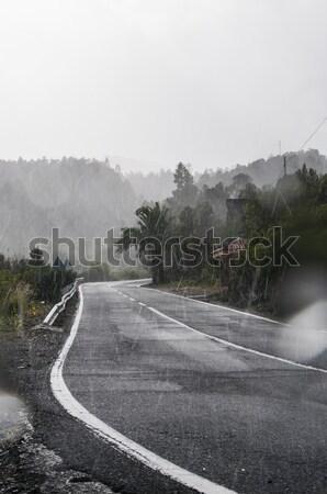 Tropische regenachtig weg verticaal zwaar Stockfoto © 1Tomm