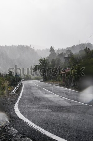 Tropicales pluies route vertical vue lourd Photo stock © 1Tomm