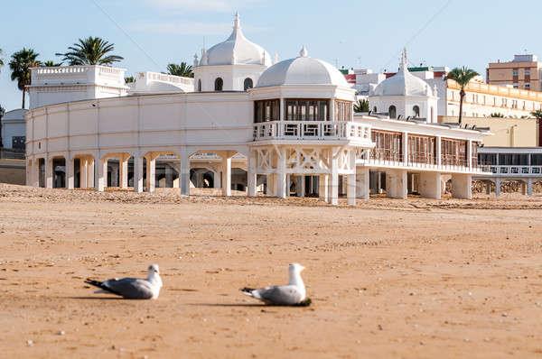 пляж Чайки Испания фотография лет океана Сток-фото © 1Tomm