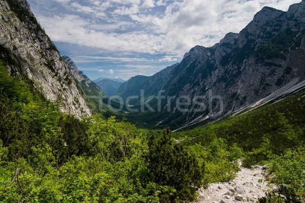 горные долины Альпы панорамный мнение красивой Сток-фото © 1Tomm