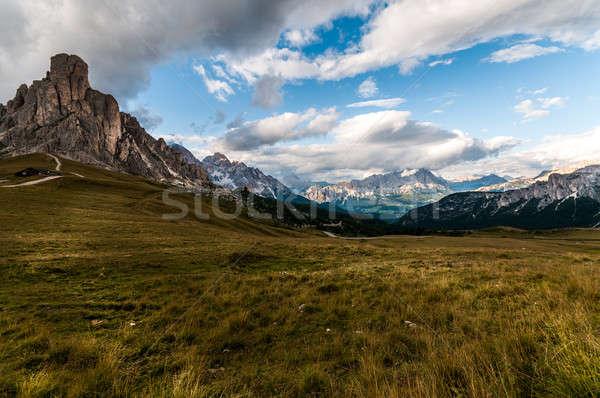 типичный альпийский луговой год наслаждаться Сток-фото © 1Tomm