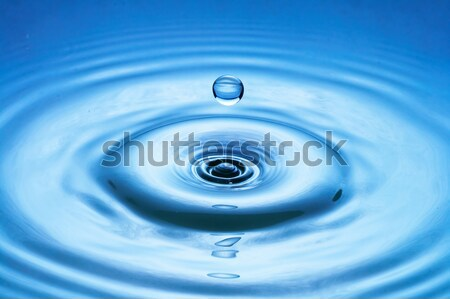 water drop (image 31 of 51, I have all phases of falling drop) Stock photo © 26kot