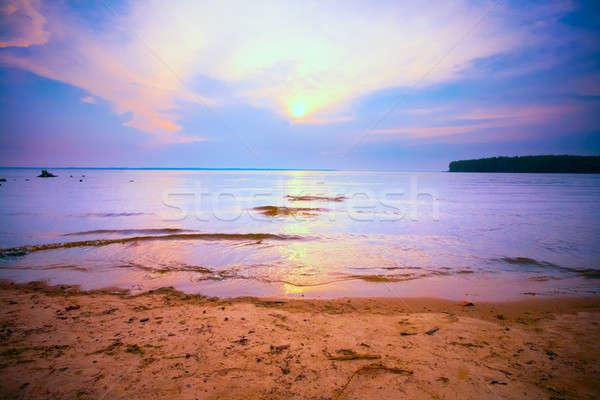 Gün batımı su güzel renkli gökyüzü ağaç Stok fotoğraf © 26kot