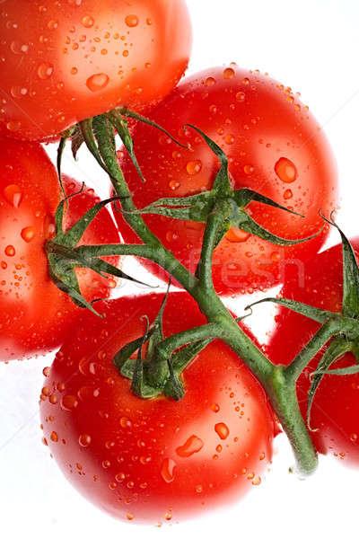 помидоров зрелый томатный изолированный белый воды Сток-фото © 26kot