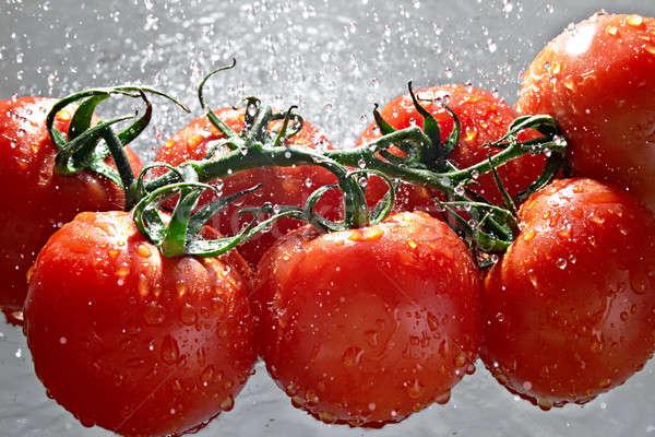 помидоров зрелый капли воды воды продовольствие природы Сток-фото © 26kot