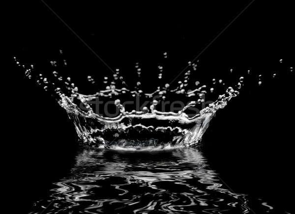 капли воды блестящий прозрачный черный природы Сток-фото © 26kot