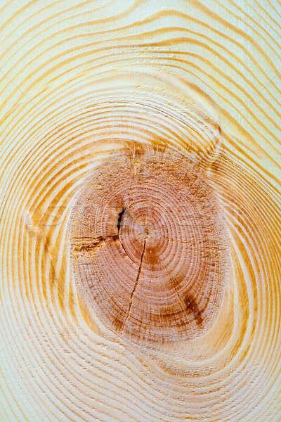 wood background Stock photo © 26kot
