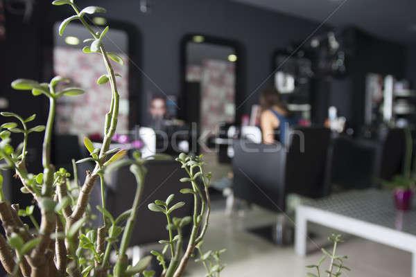Salon de coiffure réel affaires mur design cheveux Photo stock © 2Design