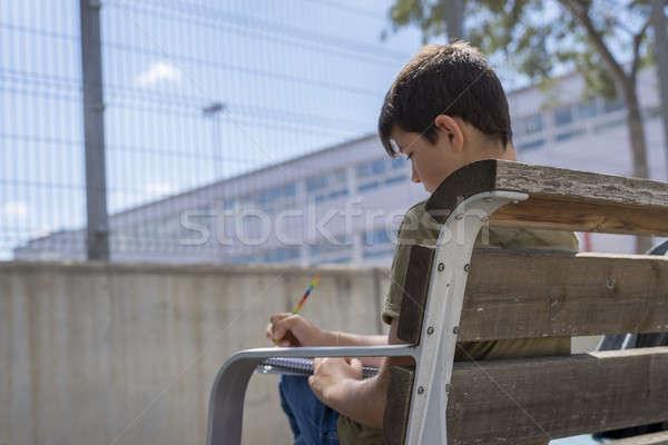 Stockfoto: Portret · tiener · jongen · vergadering · huiswerk · hout
